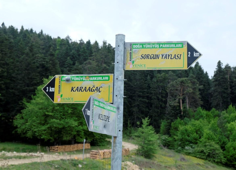 Yenice Ormanları Safranbolu